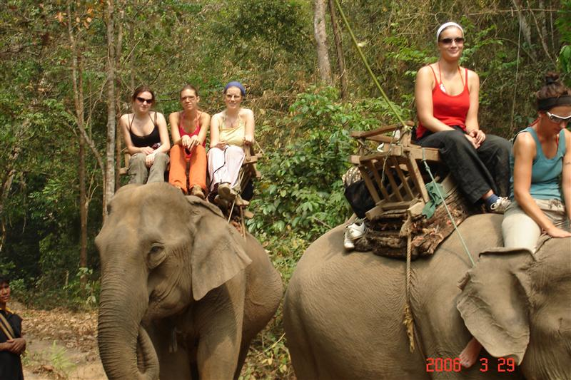 Elephant riding on trek