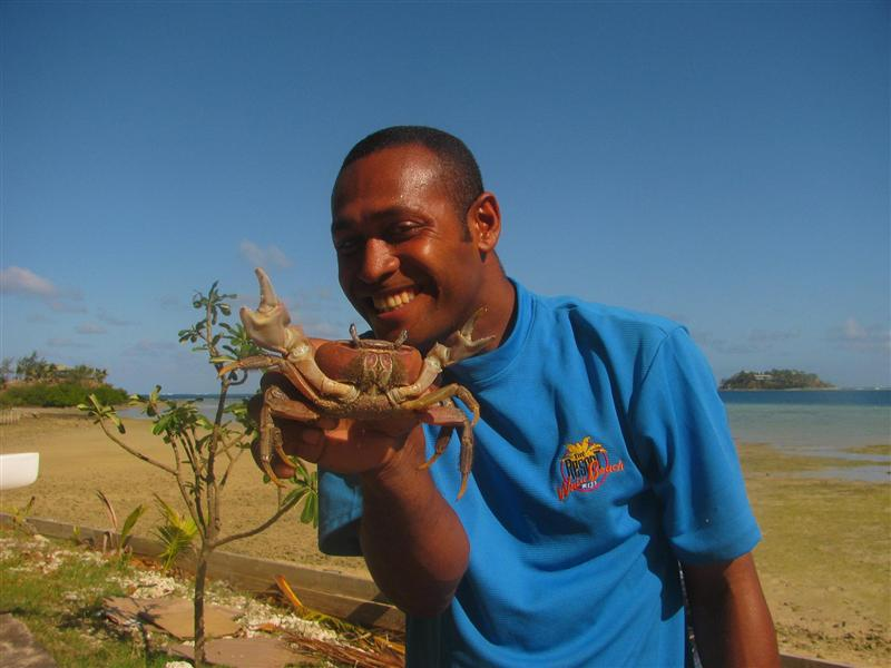 Sunny showing a giant crab, Walu Beach, Malolo Island, Fiji