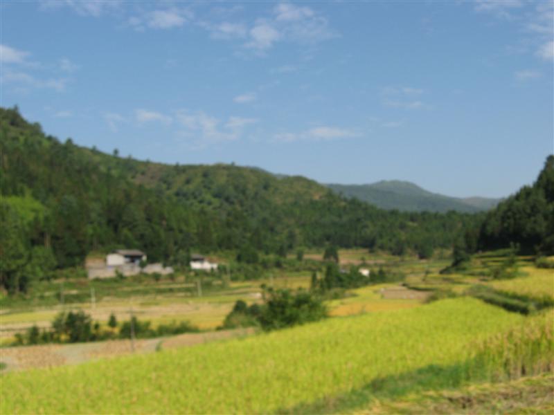 Photo from Tengchong, China
