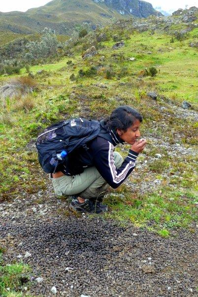 Komal picks up the scent of the trail