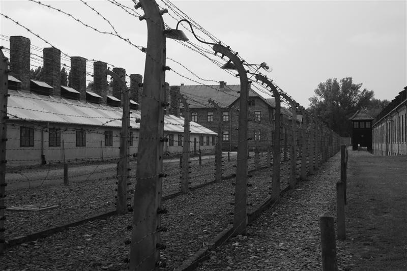 Electric Fences Auschwitz